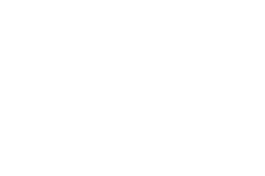 auto-trail-logo-white2